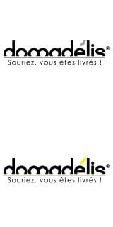 Logo Domadelis : création site e-commerce et mobile